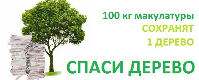 Спасем наши деревья, сохраним леса России!