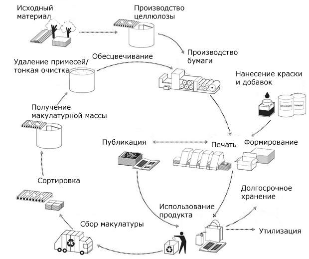 Схема возвращения макулатуры в оборот производства и потребления